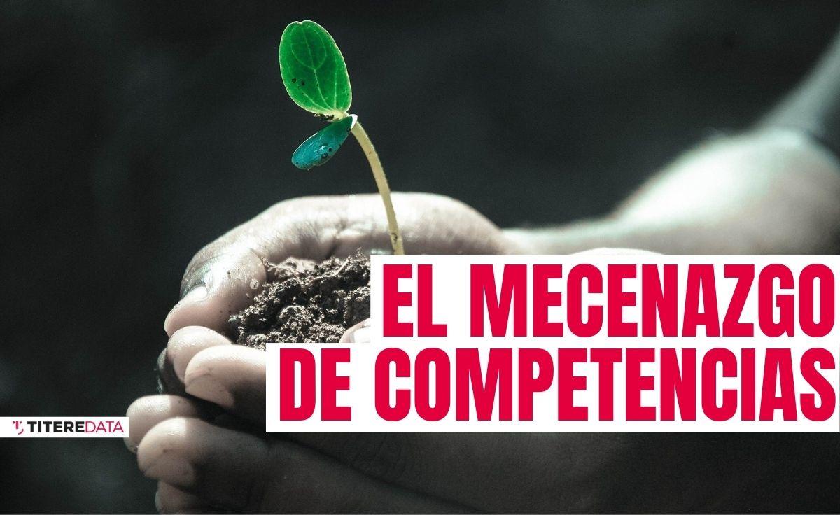 El mecenazgo de competencias: una alternativa para la sostenibilidad del sector cultural
