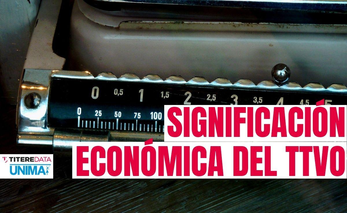 Significación económica del sector TTVO