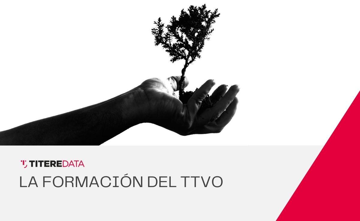 La formación en el sector TTVO