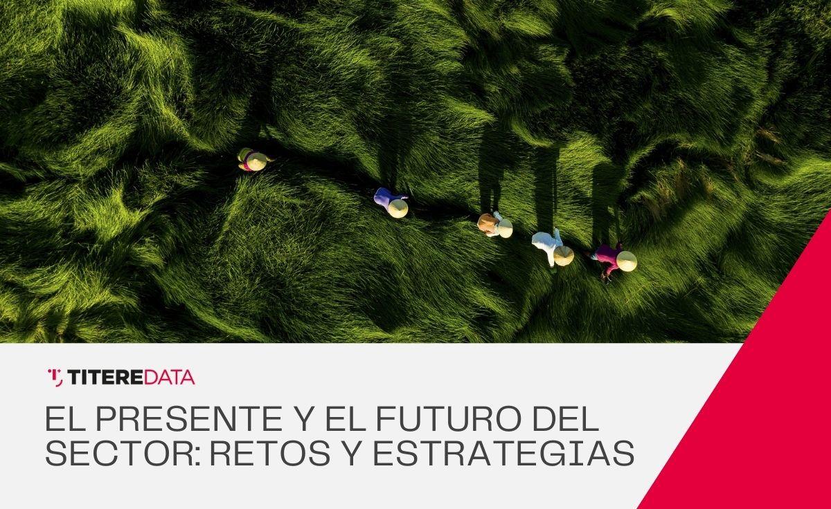 Situación actual, futuro del sector y estrategias de mejora